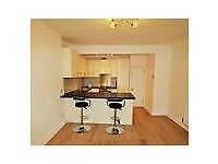 AN AMAZING 2 BEDROOM FLAT LOCATED IN SOUTH CROYDON !