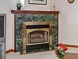Insta Flame DV36 Gas Fire Place with blower