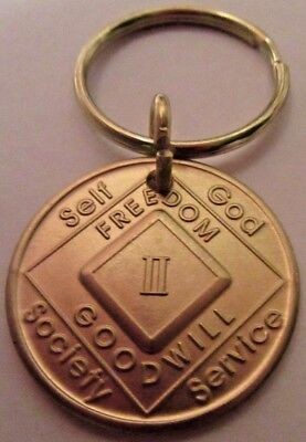NARCOTICS ANONYMOUS  NA KEY TAG 2 TWO YEAR Keyring medallion Serenity Clean for sale  Shipping to Canada