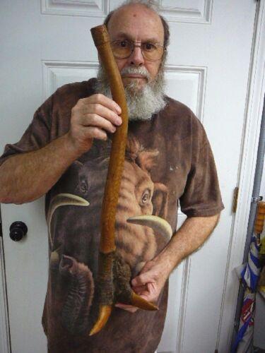 CLUB-4 Genuine Penobscot Native American Root club war weapon ceremonial 1900