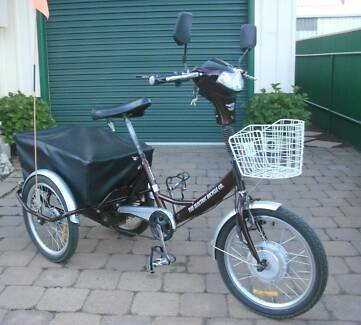 Electric Tricycle with Large Covered Carry Basket