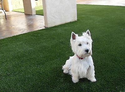 8'x12' Premium Synthetic Turf Artificial Grass Fake Lawn For indoor outdoor pet