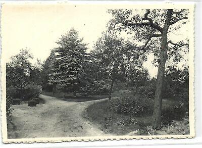 1 Postcard Lille Pensionnat des Religieuses Ursulines Un coin du jardin