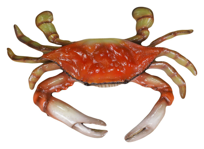 Red Crab Statue Hanging 3FT  - Sea Life Decor