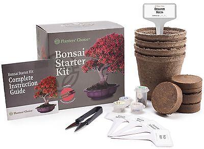 Planters Choice Bonsai Starter Kit   Complete Kit To Easily Grow 4 Bonsai Trees