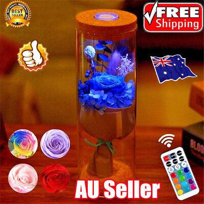 Bloom LED Rose Bottle Lamp Flower Bottle Light with Remote Control Night Light E