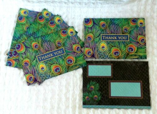 Punch Studio Thank You Cards PEACOCK Feathers Lot of FIVE Blank Inside Colorful
