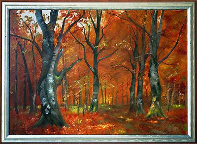 Hans Ranzoni d.J. 1896-1991 Wien: Herbstlicher Laubwald Öl-Gemälde 49 x 69 cm