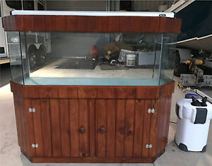 4ft fish tank Lake Macdonald Noosa Area Preview