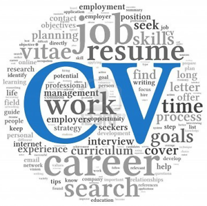 $75 Professional Resume's and Cover letters (resume,c.v) FIFO inc Perth Region Preview