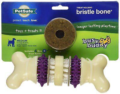 PetSafe Busy Buddy BRISTLE BONE Dog Toy Dental Treat and Chew Medium
