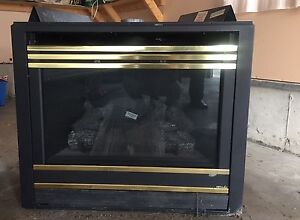 Fireplace insert for sale Cambridge Kitchener Area image 2