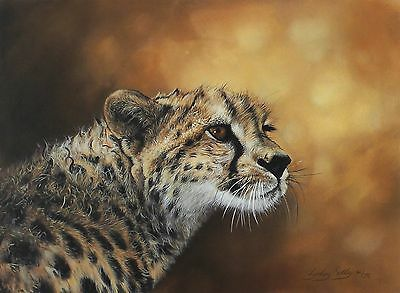 "LYNDSEY SELLEY ""Junior"" cheetah cub SGD OUT-OF-PRINT LE SIZE:38cm x 47cm NEW"