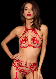 Wanted: WANTED: Honey Birdette Belle Any Colour