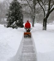UNLIMITED SNOW REMOVAL / PLOWING