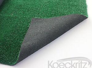 Beaulieu Indoor Outdoor Artificial Grass Turf Area Rug