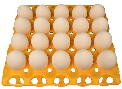 6 Rite Farm Products 20 Egg Plastic Trays For Duck Goose Turkey Peafowl Carton