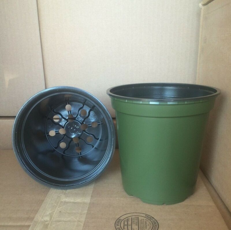 "1 gallon trade plastic Nursery 6"" x  6""  Flower Pots *SAME DAY SHIPPING*"
