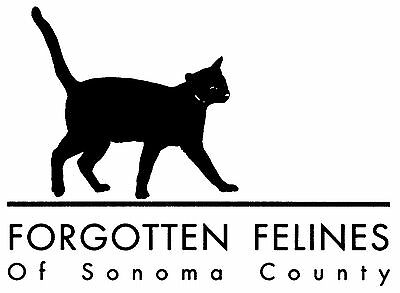 Forgotten Felines of Sonoma County