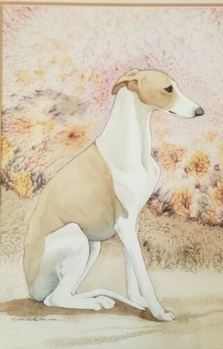 Original watercolor of a Whippet by Martha Van Loan