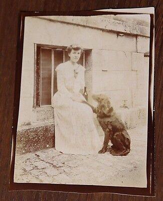 Photo ancienne 1900 jeune fille élégante robe mode éducation setter anglais