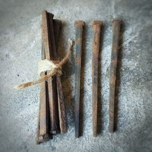 LARGE Antique Coffin Nails, Square Nails, Oddities & Curiosities, 4 1/2 Inches