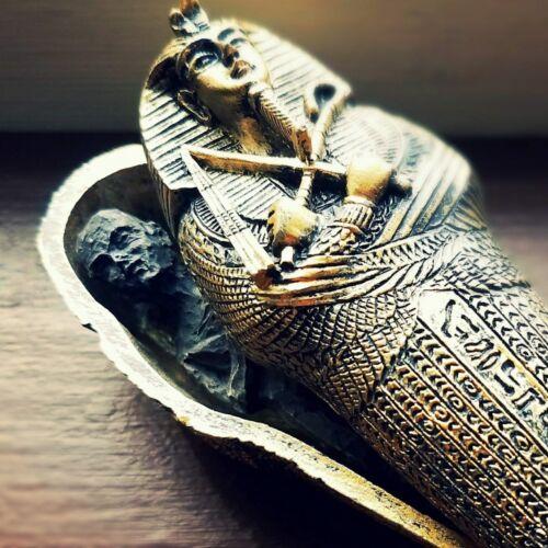 Mummy in Coffin, Egyptian Sarcophagus with Mummy, King Tut, Oddities