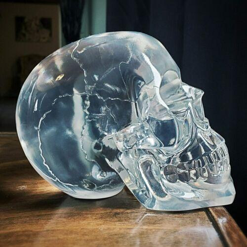 Translucent Human Skull, Resin Crystal Skull, Halloween, Oddities, Gothic Decor
