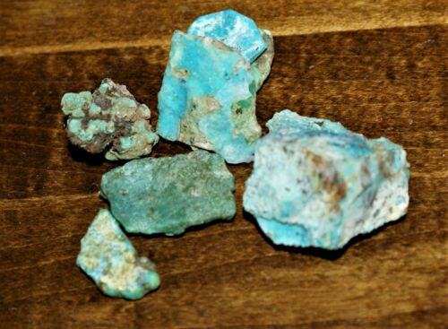 Carico Lake Nevada Turquoise Rough Old Stock Cabbing 63.7 Grams TS43 01