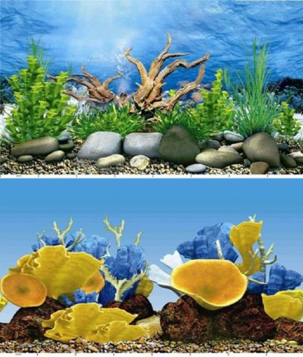 Aquarium Fish Tank Background Double Sided 31 80cm High 2 To 10 Ft Lengths Ebay