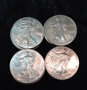 American Eagle Silver Dollar Lot