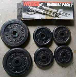 Weider chrome dumbell pack and weights. Grafton Clarence Valley Preview