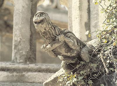 (20296) Postcard - Gargoyles - Burgos Cathedral, Spain