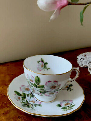 Royal Vale Bone China England Tea Cup and Saucer  Wild Rose w/Gold Trim