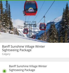 Banff Sunshine Village Sightseeing Pakage for 2 adult