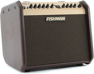 Fishman Loudbox Mini with padded gig bag