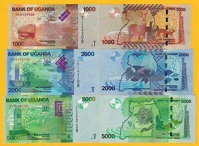 Uganda Set 1000, 2000, 5000 Shillings 2017 UNC Banknotes
