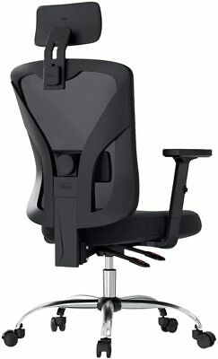Hbada Ergonomic Office Desk Chair With Adjustable Armrest Lumbar Support And