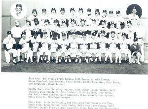 1981-BOSTON-RED-SOX-8X10-TEAM-PHOTO-YASTRZEMSKI-HARPER-BASEBALL-FENWAY