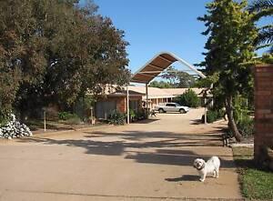 Lucky Strike Motel Tomingley Narromine Area Preview