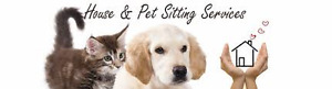 Reliable pet and house sitting