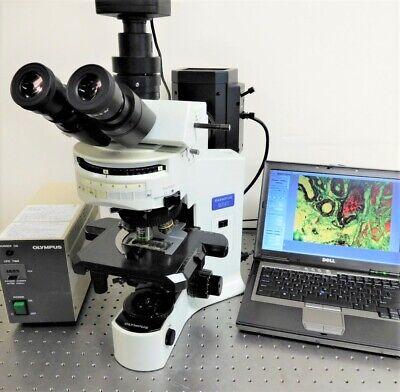 Olympus Bx41 Fluorescence Microscope Trinocular With 10mp Camera System