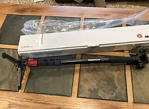 Manfrotto Monopod 560B-1 with 234RC Head