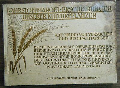 Nährstoffmangel-Erscheinungen unserer Kulturpflanzen Beobachtungen Versuche 1914