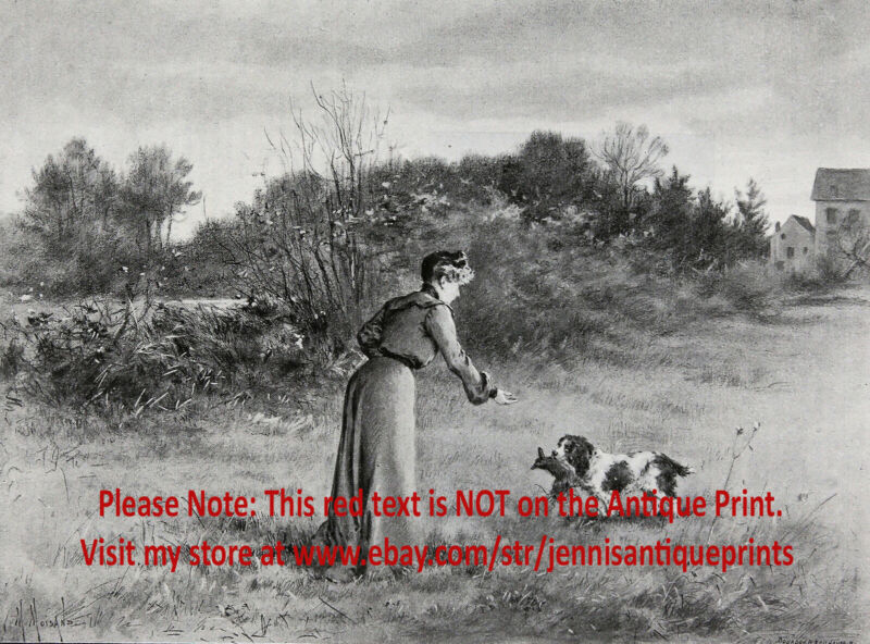 Dog Cocker Spaniel Field Trial Training Woman Hunter Huntress 1903 Antique Print