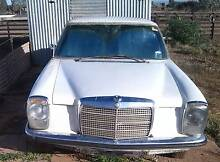 1983 Mercedes-Benz 250, Swap for a male sheep Peterborough Area Preview