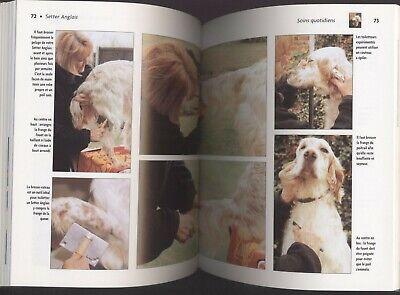 Livre le setter anglais origines soins éducation santé illustre animalia chien