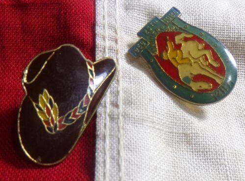 2 Vintage 1980s WESTERN THEMED ENAMEL PINBACKS 25th Anniversary Rodeo Pin!!!