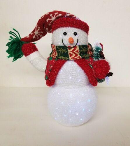 Fiber Optic Snowman-Christmas Decor
