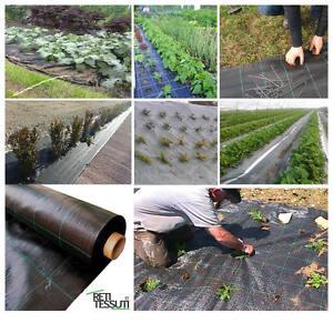 Telo tessuto per pacciamatura nero per orto giardino anti - Telo tessuto non tessuto giardino ...